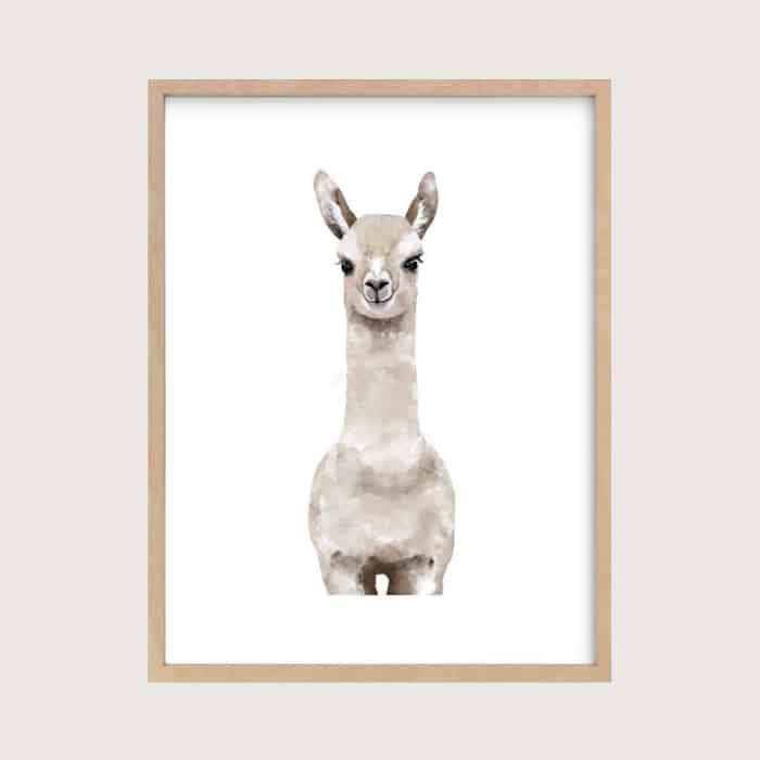 llama print for nursery wall