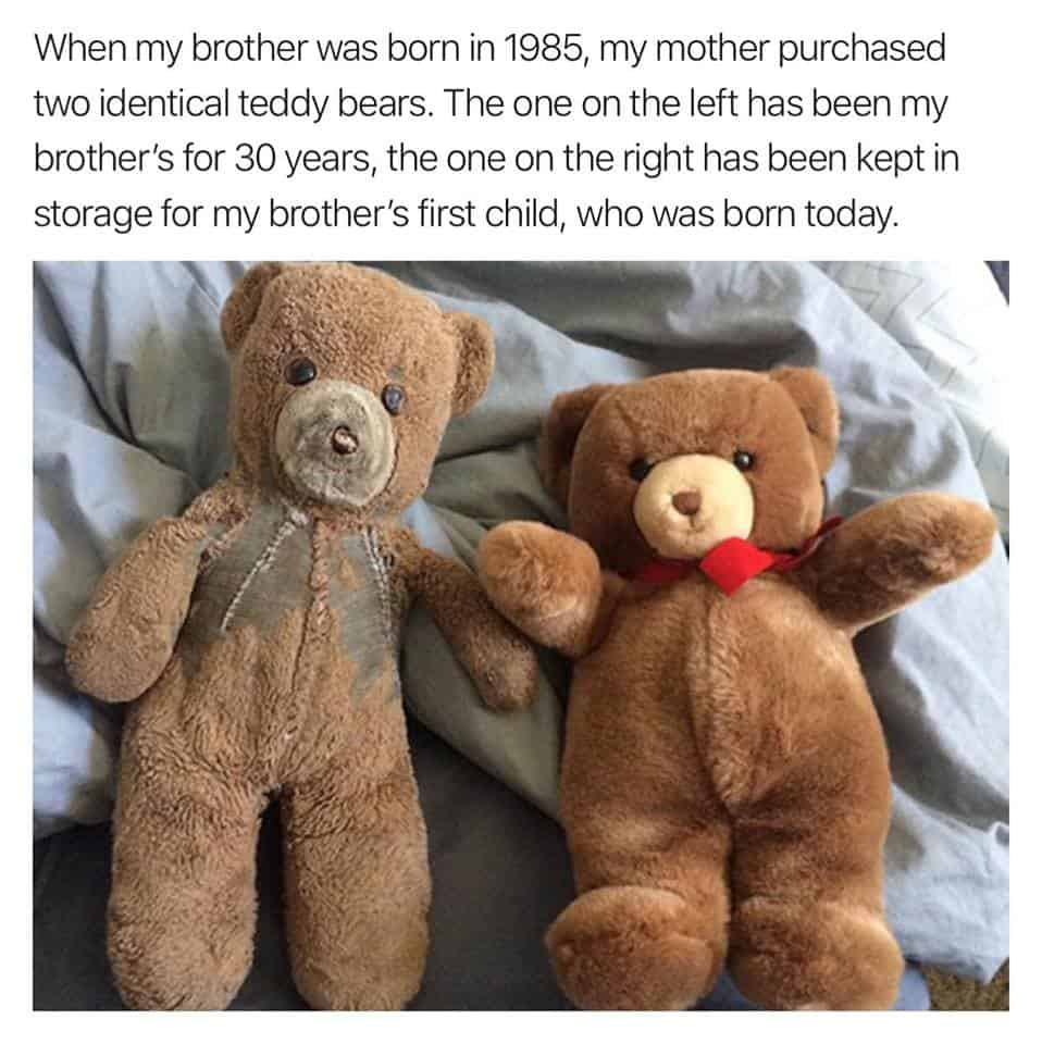 This Baby Gift Idea Will Blow Their Future Minds, picture of two teddy bears - baby gift idea