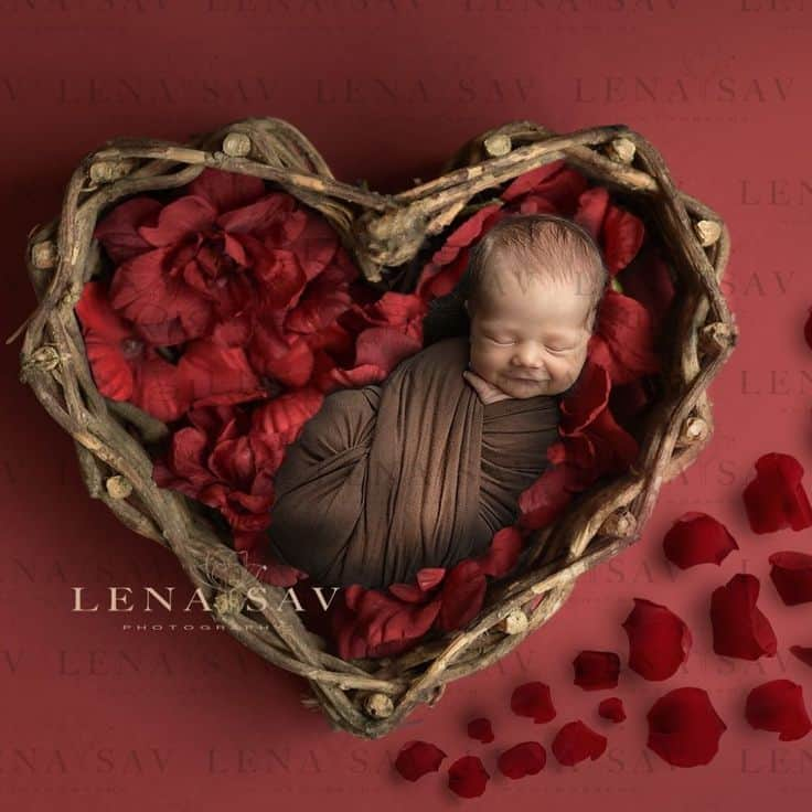 Swaddled newborn sleeping in heart shaped basket filled with red flowers - Baby's First Valentine's Day Photo shoot