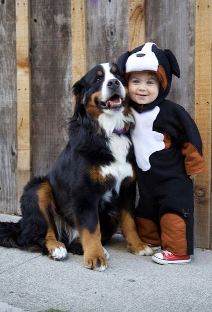 baby dressed as dog with his dog