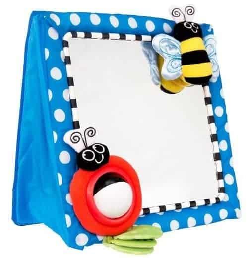 Christmas presents for infants: Sassy Mirror