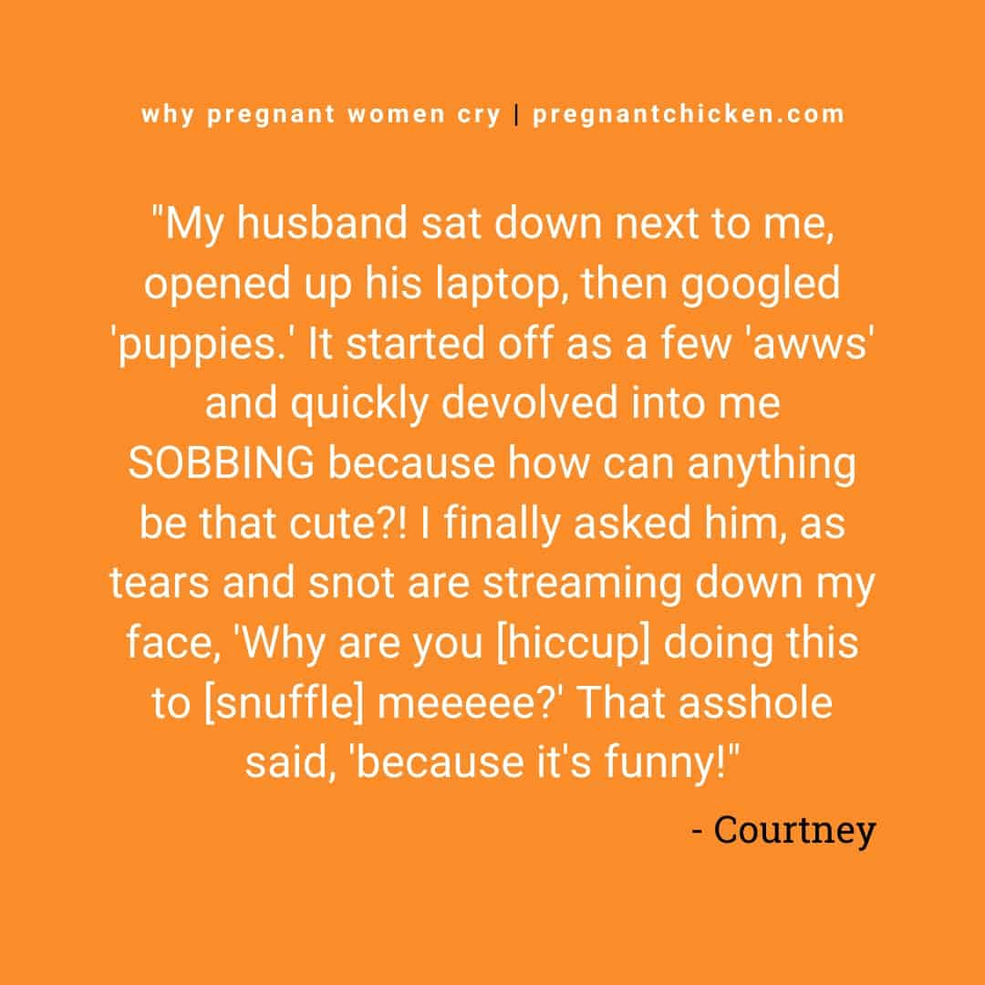 """Reasons pregnant women cry series, text reads """"my husband sat down next to me, opened his laptop, then googled 'puppies'. It started off as a few 'awes' and quickly devolved into me SOBBING because how can anything be that cute?! I finally asked him, as tears and snot are streaming down my face, 'Why are you [hiccup] doing this to [sniffle] meeeee?' That asshole said, 'because it's funny!"""""""