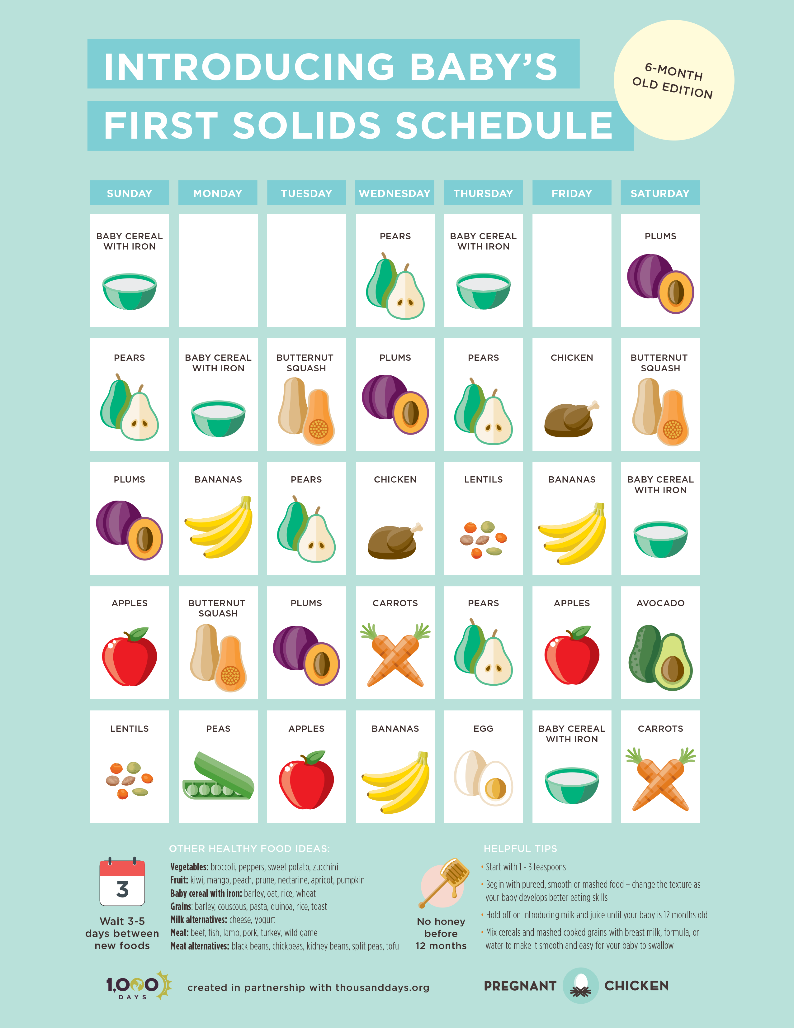 introducing baby's first solids schedule